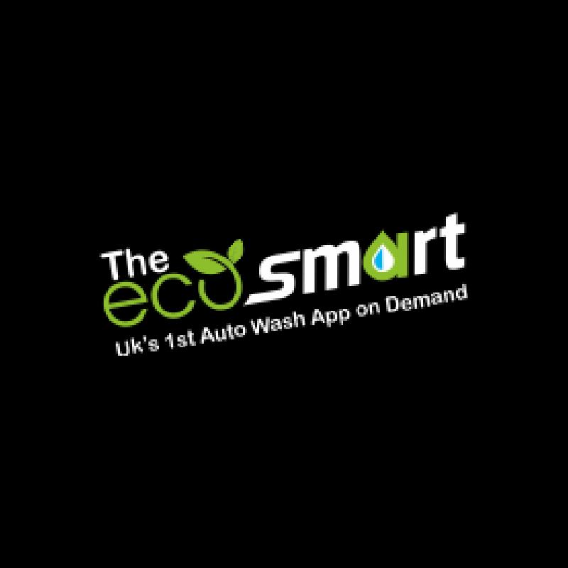 TheEcoSmart Ltd